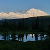 Patti wanders back up to Nugget Pond at 11 pm to catch another Denali reflection.
