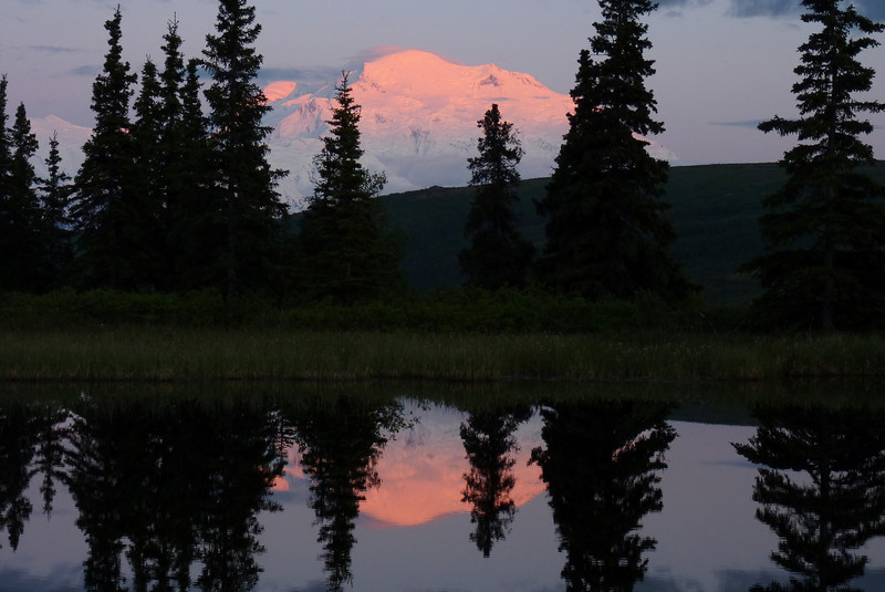 Only about 30% of people visiting Denali National Park ever get to see The Mountain, and we get to see THIS!