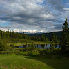 Not too many mountains visible on our last evening at Camp Denali, but the evening light at Nugget Pond is intense!