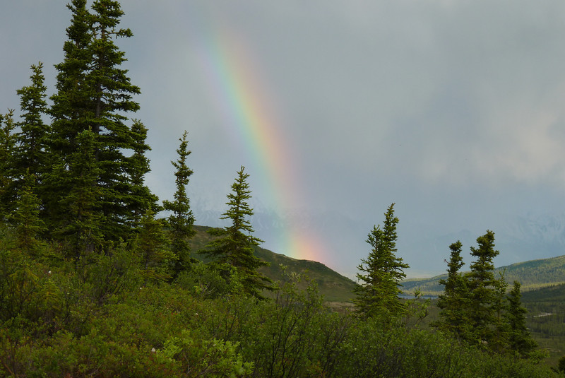 The rainbow over Wonder Lake from our cabin porch.