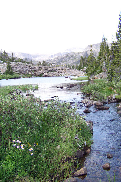 She decides that the stream to our north is the most scenic and pleasant place to get attacked by mosquitos while gathering and sterilizing multiple bottles of water.