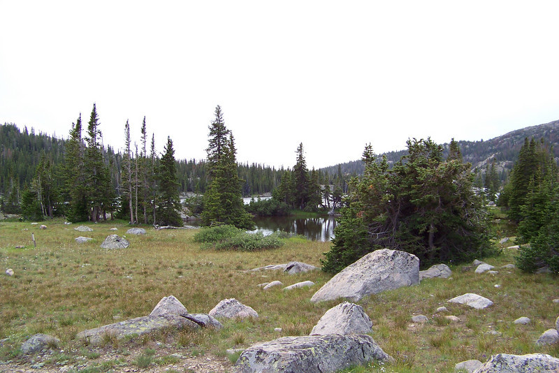 After Patti emerges from the tent post-rain, she searches out the most promising place to gather water. She considers Lake Helen, but a wide marsh separates us from the lake. This pond is a second option she considers.