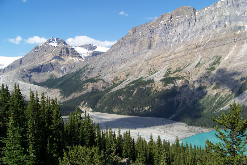 Here we see a little bit of the Peyto Glacier and the braided delta where the glacier melt flows into the Lake.