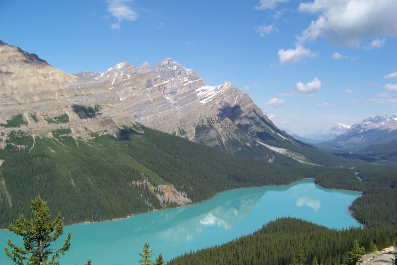 We drive north up the Icefields Parkway, stopping next at Bow Summit, where we walk to an overlook of Peyto Lake.