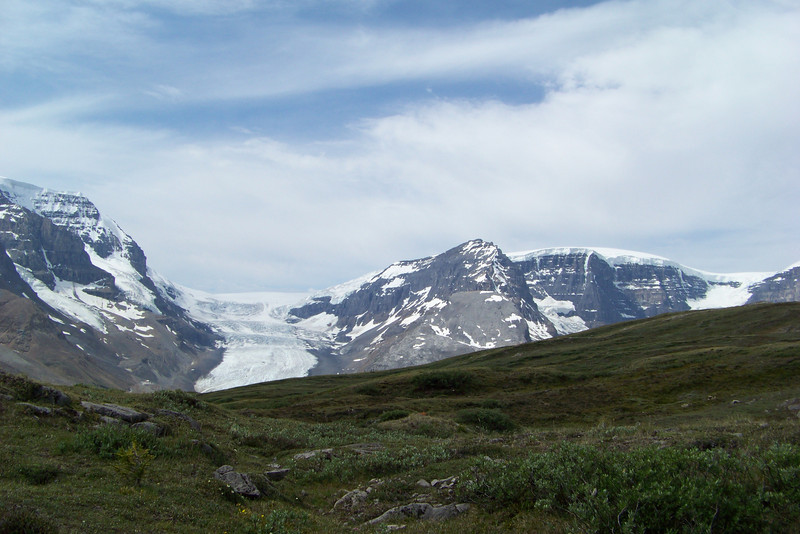 Another sweeping view, from the Wilcox Pass trail, of both the Athabasca and Snow Dome glaciers.