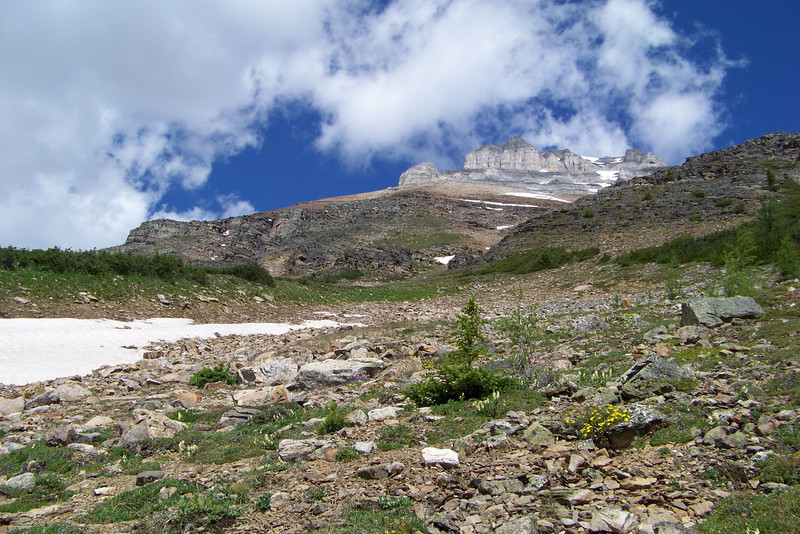 Eiffel Peak is the backdrop for the avalanche path; snow still lingers.