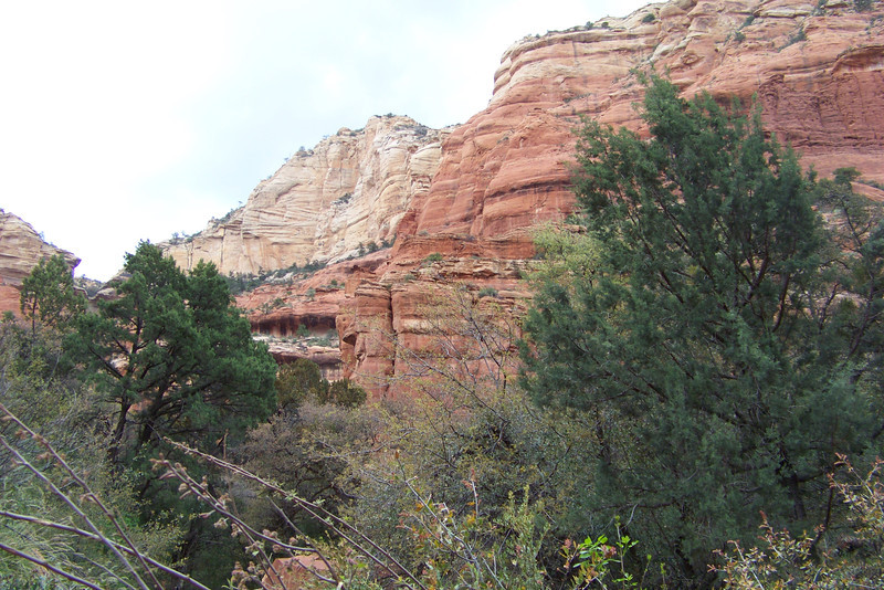 The cloudy sky almost enhances the red rocks.