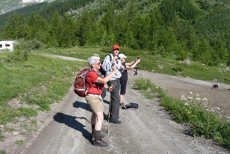 Tourists taking pictures of the prototyipcal glacial valley
