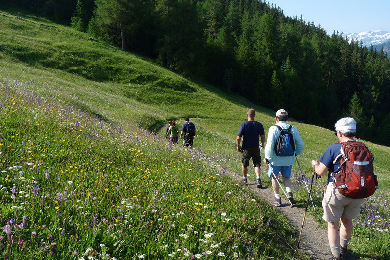 Time to leave the alpine meadow and return to Courmayeur for our final Backroads picnic lunch.