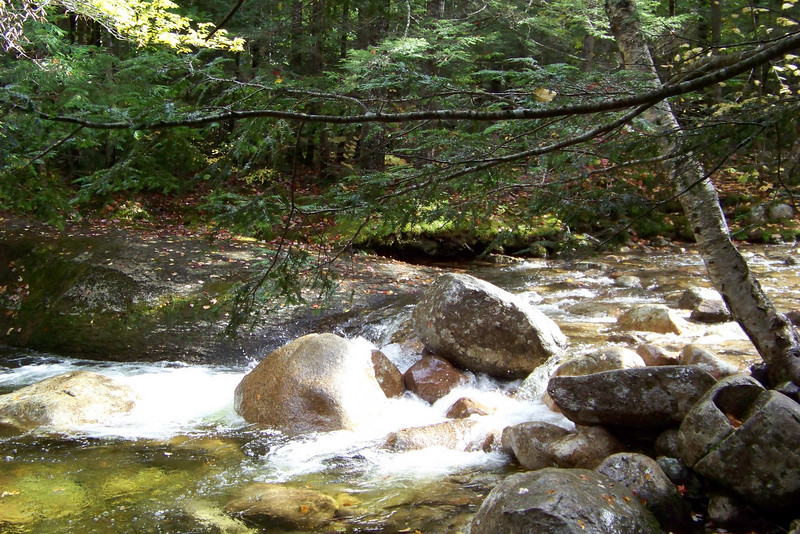 Scenes from the Sabbaday Fall trail