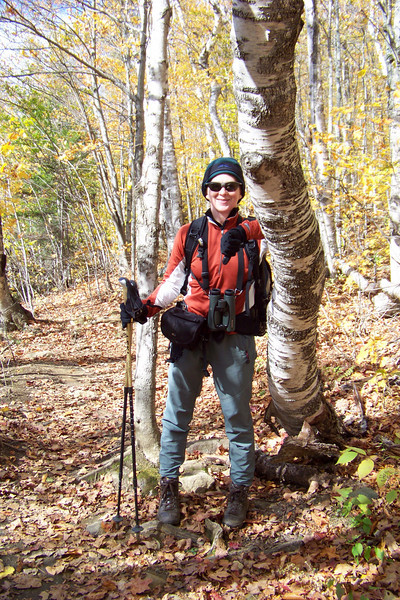Patti admires a pretty birch tree with a thick and gnarly trunk.