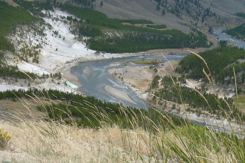 We have nice looks down at the Yellowstone River from this vantage point.