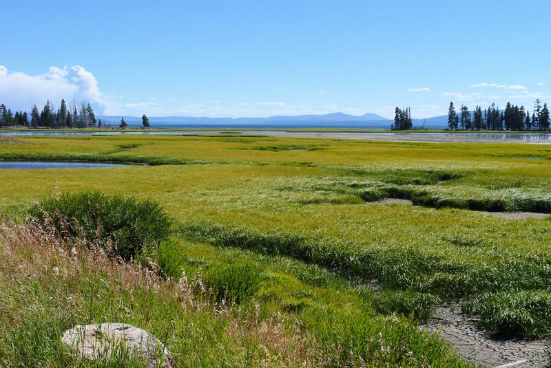 This beautiful marshy area is Pelican Creek, on the northeastern side of Yellowstone Lake