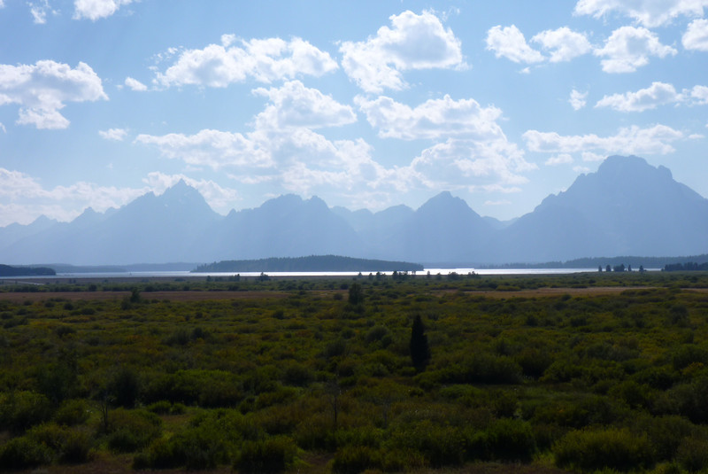 Willow Flats, with Jackson Lake in the background, is prime moose habitat.