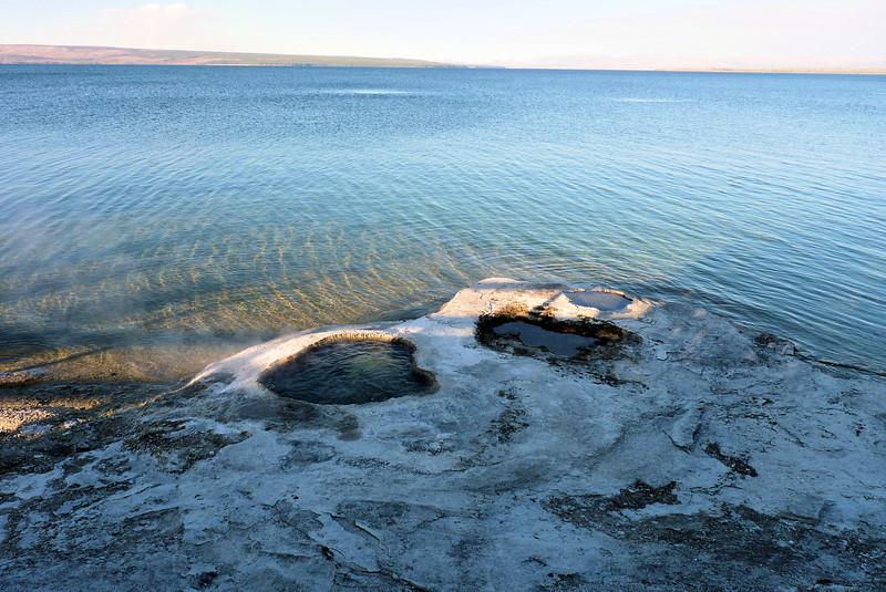 Lakeshore Geyser
