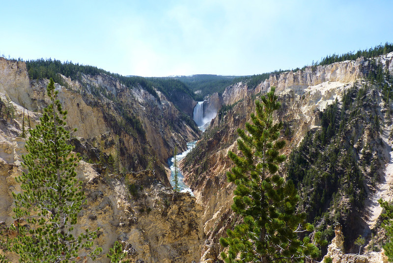 We make the obligatory stop at Artist Point to see the Lower Falls of the Yellowstone River and the Grand Canyon of the Yellowstone.