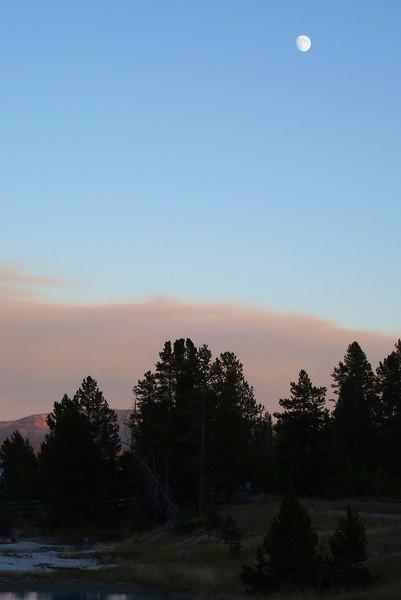 Trees, smoke and moon