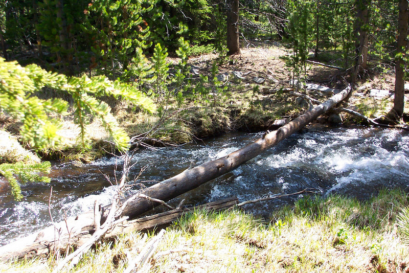 This rushing stream that prevented us from continuing on to East Tensleep lake on our second Bighorns hiking day.  With all of the snow melt, it was moving quickly, we couldn't find an easy way to cross, and with Jeane's arm in a sling, we felt it was too risky to attempt it.