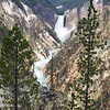 Another view of the Lower Falls of the Yellowstone River at Artist Point.