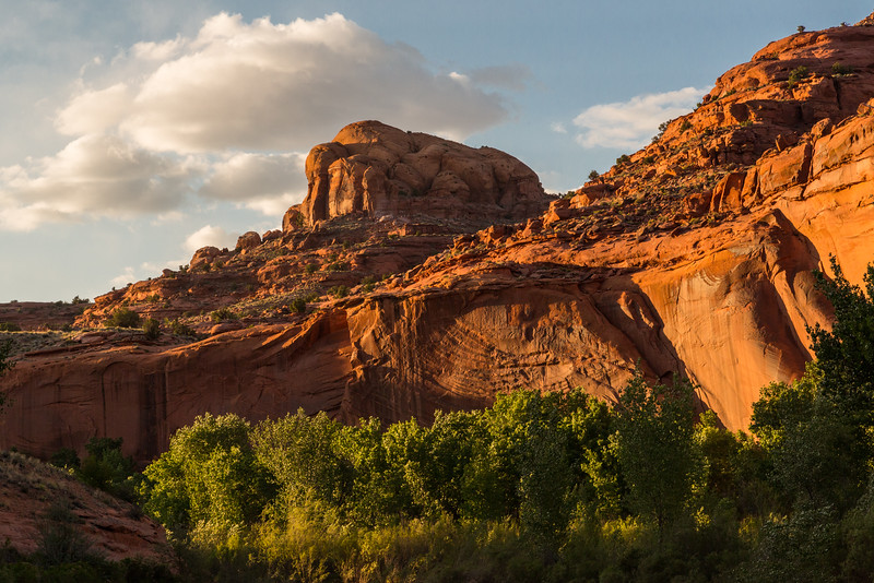 Evening sun in the Escalante Canyon Utah, near Fence Canyon
