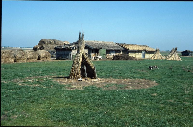 dog house near a farm (near Hortobagy National Park)