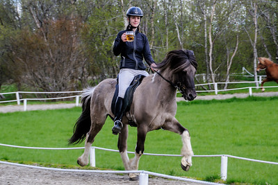 Icelandic Horse Show - 2- Friðheimar Farm -  Bláskógabyggð, Iceland
