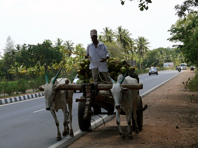 En Route to Mysore