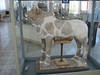 (National museum of Iran)