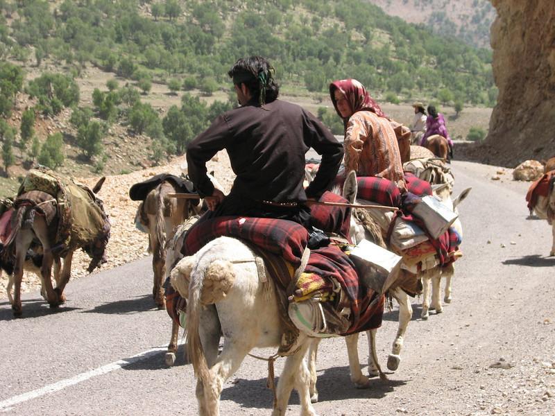 trekking nomads (Bazoft valley)