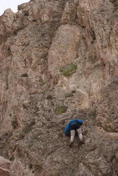 not always easy to reach the plants (Elburz mountains N. Iran 2009)
