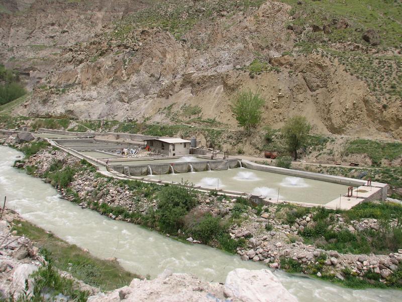 trout nursery (near Redehen, Elburz, N.Iran)