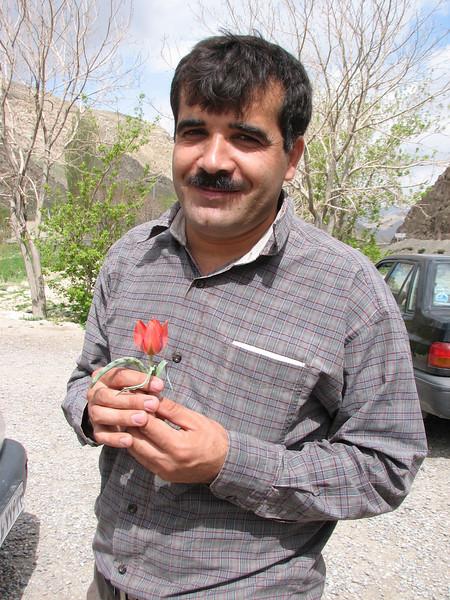 Iranian with Tulip (near Bajgiran, Koppe Dag mountains NE Iran)