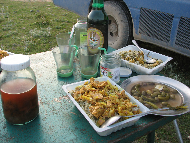 a fine Iranian Diner (SW side of the protected area Jahan Nama, Elburz, N.Iran)