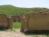shepard with his flock (Koppe Dag mountains NE Iran)