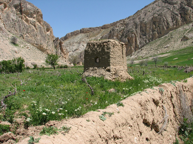 mud house and walls (Koppe Dag mountains NE Iran)
