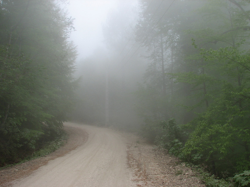 foggy conditions in this part of the protected area (NW site of the protected area Jahan Nama, Elburz, N.Iran)