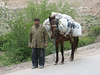 transporting (Elburz mountains N. Iran  2009)