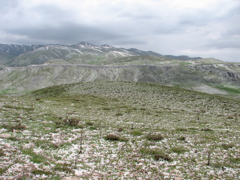 view after a hailstorm (Iran, Azarbayjan-e-Gharbi, pass 2600m NE of Qaravo (33)