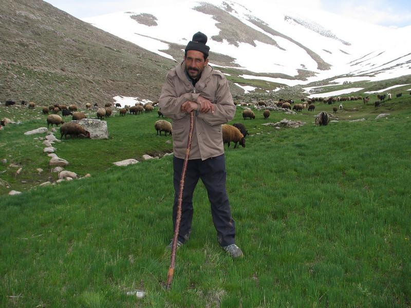 shepherd (Iran, Azarbayjan-e-Gharqi, Sahand mountains)(20)