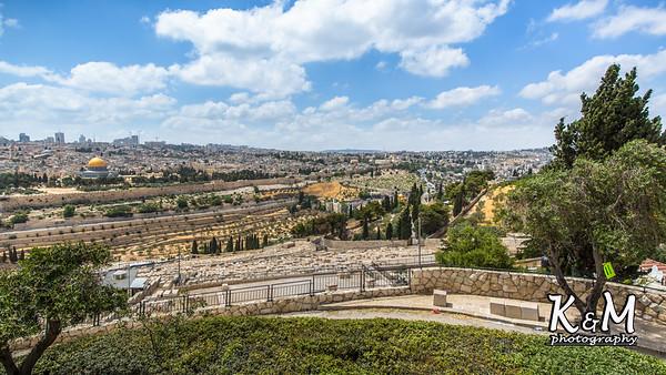 2017-05-23 (2) Mount of Olives, Garden of Gethsemane (7 of 51)