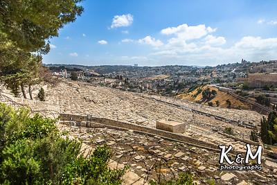 2017-05-23 (2) Mount of Olives, Garden of Gethsemane (28 of 51)