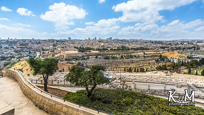 2017-05-23 (2) Mount of Olives, Garden of Gethsemane (5 of 51)