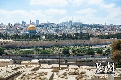 2017-05-23 (2) Mount of Olives, Garden of Gethsemane (14 of 51)
