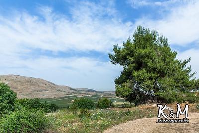 2017-05-19 * (1) Malkiya Kibbutz (19 of 67)