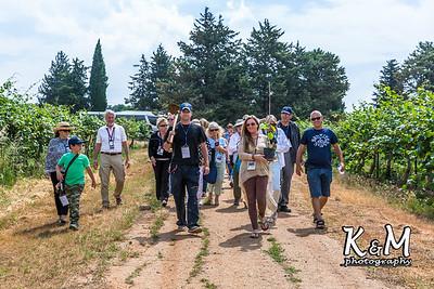 2017-05-19 * (1) Malkiya Kibbutz (31 of 67)