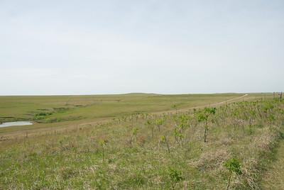 04-25-2012-DSC_0206