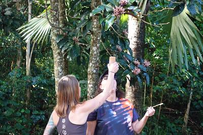 Andrea demos the honey.