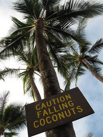 Kauai: Hawaii Paradise #2