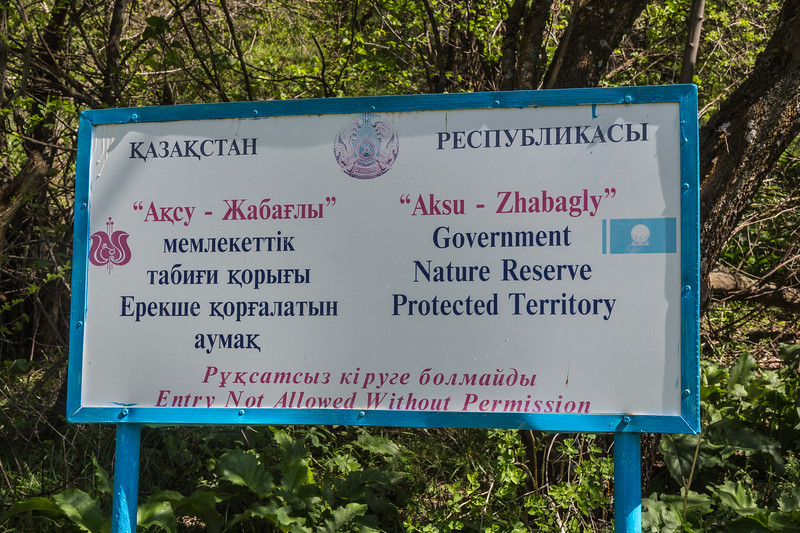 Zhabagly nature reserve, loc. T