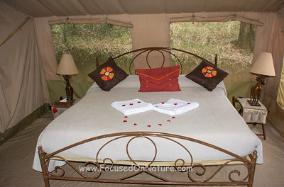 Nairobi Tented Camp Room